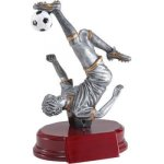 Soccer, M. Resin Excellence Resin Trophy Awards